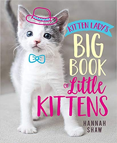 Book of Little Kittens